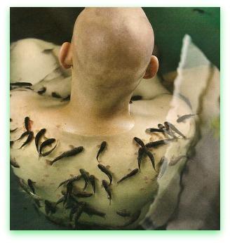 Propolis con glicerina da eczema